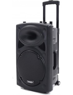 "Novonova Enceinte Sono Portable 15""/38cm 900W LED RVB, Haut parleur avec Micro Sans Fil & Micro Fil, Support Lecteur MP3"